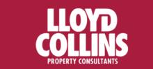 LLoyd Collins